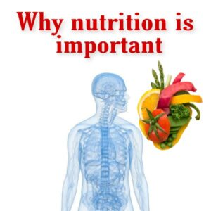 Why nutrition is important for human body