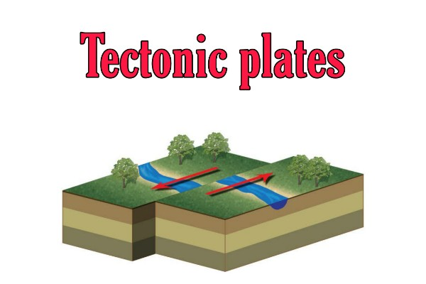 What cause the tectonic plates to move